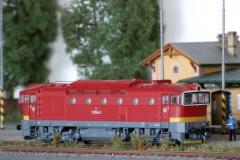 T478.3187 Brejlovec
