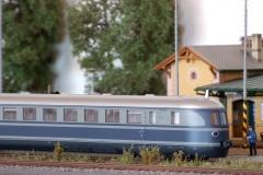 SVT 137 - M297.0 Hamburčan