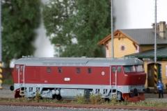 T478.1003 Bardotka