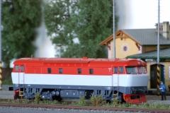 T478.1004 Bardotka