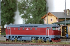 T478.1164 Bardotka